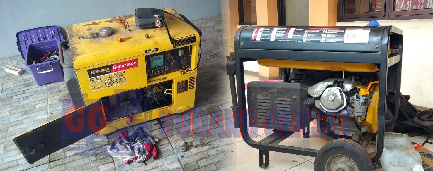 Genset Bensin, Genset Portable